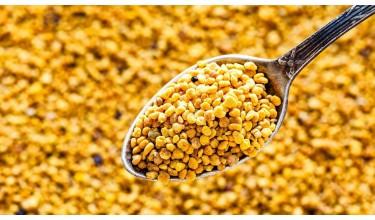 Сушка та зберігання бджолиного пилку