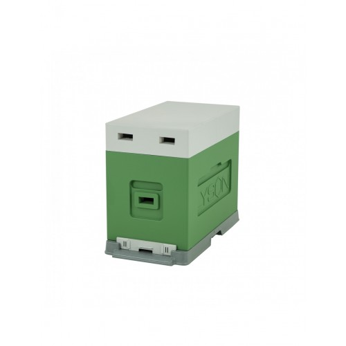 Вулик пінополістирольний для вирощування пакетів Дадан на 6 рамок (пластикове дно) фарбований зелений