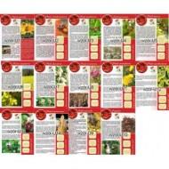 Брошурки інформаційні (на польській мові) (20 однакових)